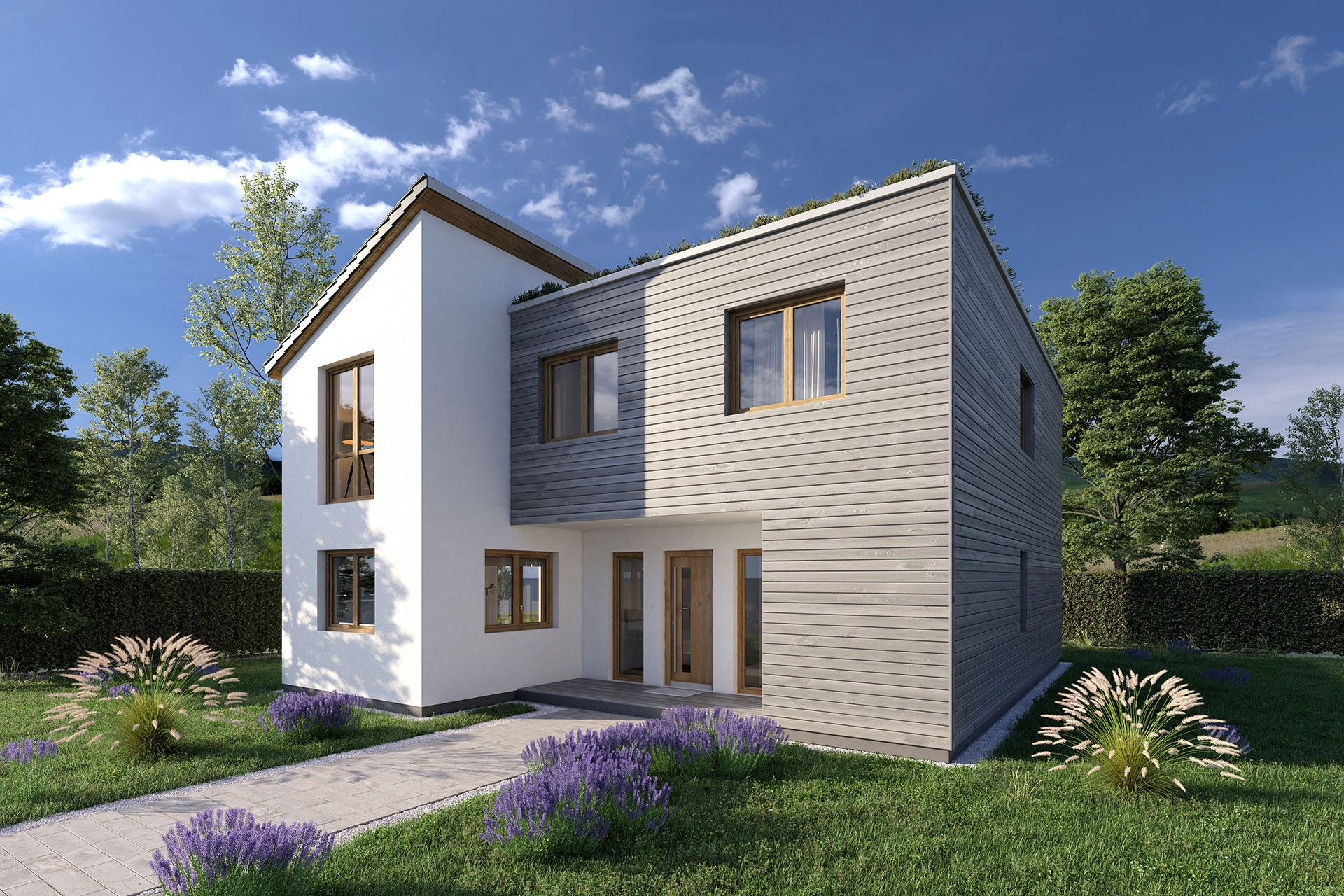 3D Architectural Render House