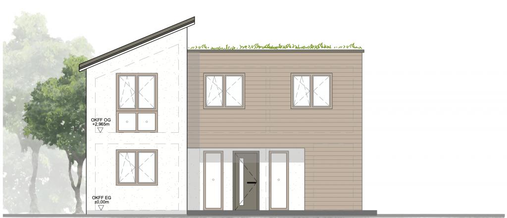 Architektur Rendering Einfamilienhaus